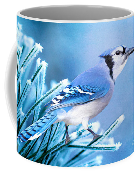 Blue Jay Coffee Mug featuring the photograph One Frosty Morning by Laura D Young