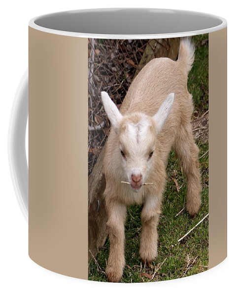 Kid Coffee Mug featuring the photograph One Two Pick Up Sticks by Jean Haynes