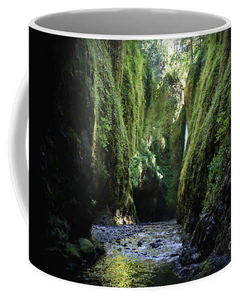 Coffee Mug featuring the photograph Oneonta Gorge Adventure by Michelle Williamson