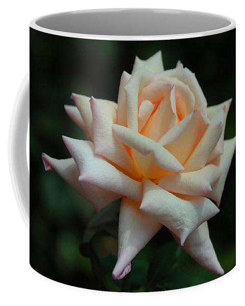 Floral Coffee Mug featuring the photograph Only A Rose by Georgiana Romanovna