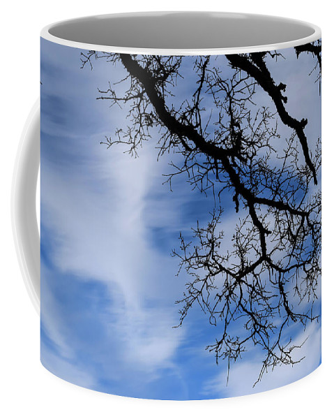 Tree Coffee Mug featuring the photograph Only Once Like This by Alan C Wade