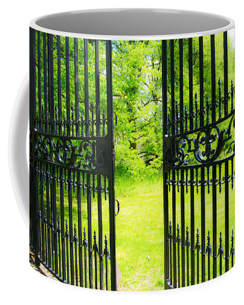 Nature Coffee Mug featuring the photograph A Glimpse Into The Spring by Anna Serebryanik