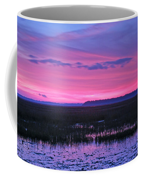 Landscape Coffee Mug featuring the photograph Open Marsh by Phill Doherty