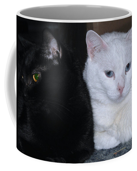 Animal Coffee Mug featuring the photograph Opposites by Kenneth Albin