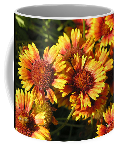 Orange Coffee Mug featuring the photograph Orange And Gold by Diane Greco-Lesser