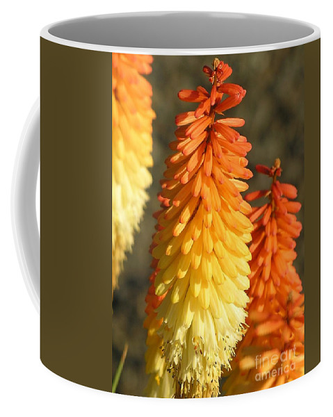 Orange Coffee Mug featuring the photograph Orange And Gold Flower by Diane Greco-Lesser
