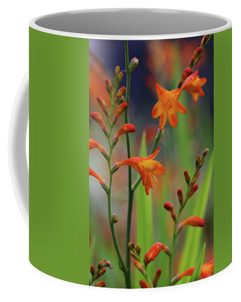 Flower Coffee Mug featuring the photograph Orange And Green by Doris Potter