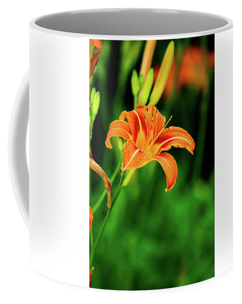 Nature Coffee Mug featuring the photograph Orange And Green by Grace Carpenter