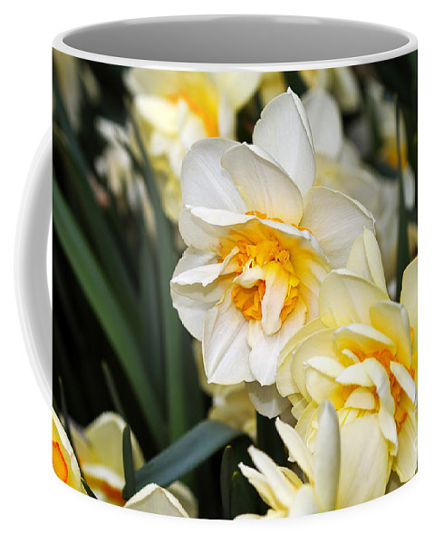 Flower Coffee Mug featuring the photograph Orange And Yellow Double Daffodil by Louise Heusinkveld