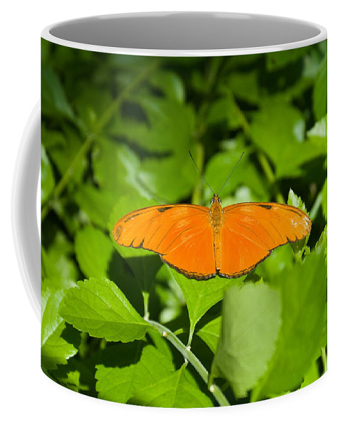 Orange Coffee Mug featuring the photograph Orange Butterfly by Douglas Barnett