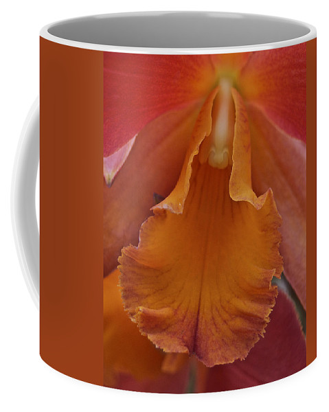 Orange Coffee Mug featuring the photograph Orange Orchid 3 by Michael Peychich