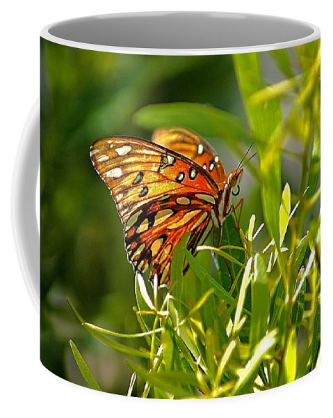 Butterfly Coffee Mug featuring the photograph Orange Passion by Lisa Clark