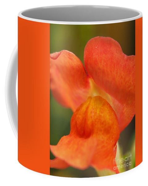 Flowers Coffee Mug featuring the photograph Orange Pout 2 by Dorothy Lee