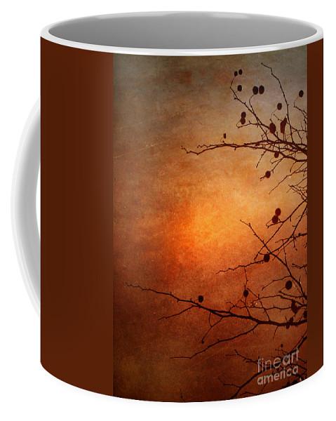 Orange Coffee Mug featuring the photograph Orange Simplicity by Tara Turner