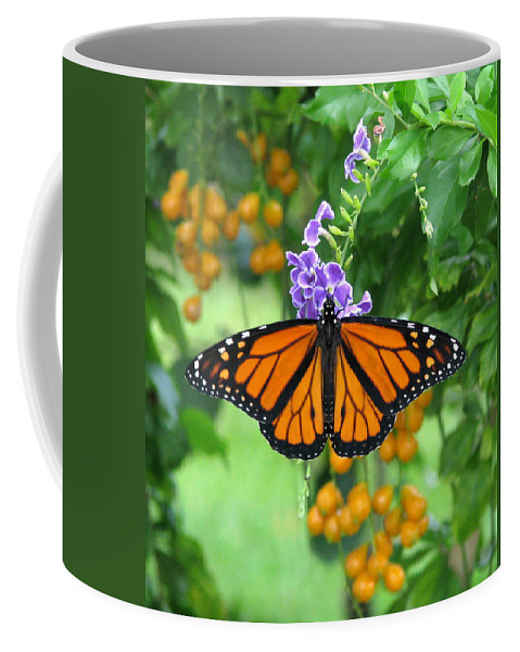 Monarch Coffee Mug featuring the photograph Orange Splendour by Peg Urban