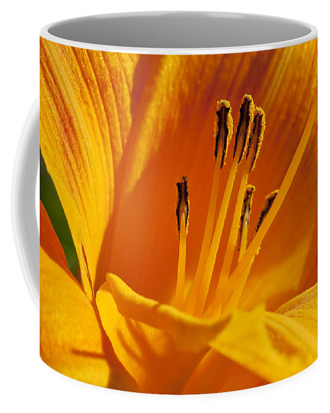 Flowers Coffee Mug featuring the photograph Orange Stamens by Kelley King