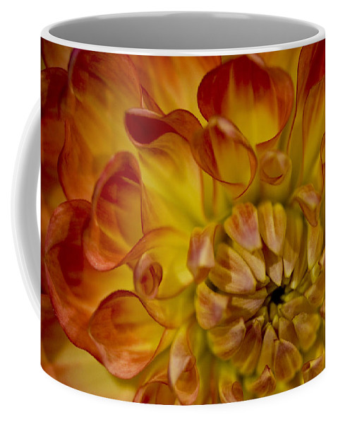 Nature Coffee Mug featuring the photograph Orange-yellow by Ches Black