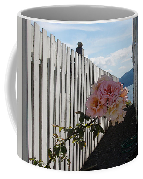 Rose Coffee Mug featuring the photograph Orcas Island Rose by Tim Nyberg