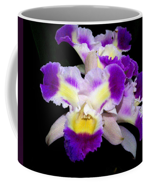 Flower Coffee Mug featuring the photograph Orchid 13 by Marty Koch