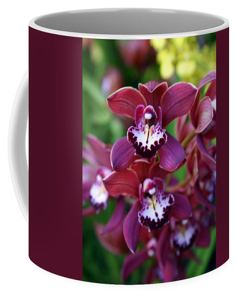 Flower Coffee Mug featuring the photograph Orchid 20 by Marty Koch