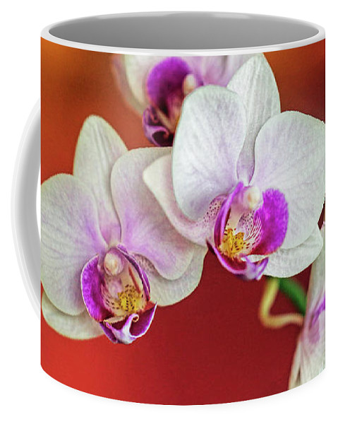 Orchid Coffee Mug featuring the photograph Orchid by A H Kuusela