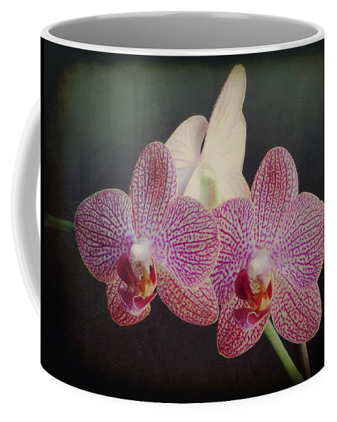 Flower Coffee Mug featuring the photograph Orchid Beauty by Vicki Stansbury
