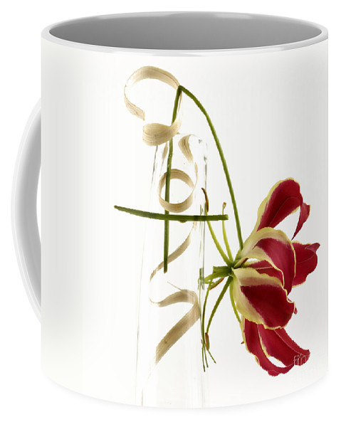 Bloom Coffee Mug featuring the photograph Orchid by Bernard Jaubert