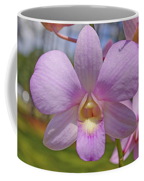 Orchid Coffee Mug featuring the photograph Orchid Flower by Kenneth Albin