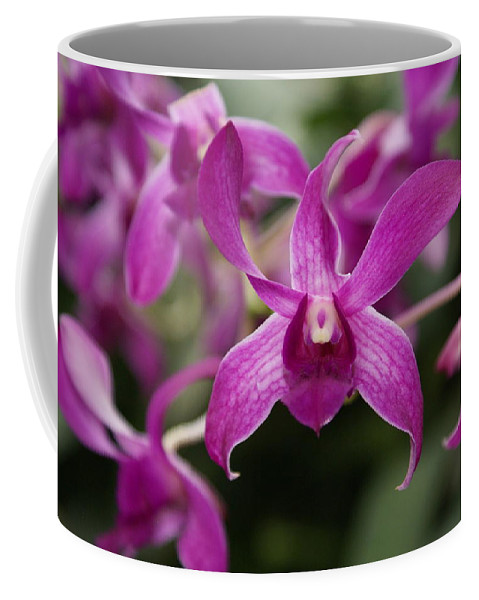 Orchid Coffee Mug featuring the photograph Orchid by Heather Coen