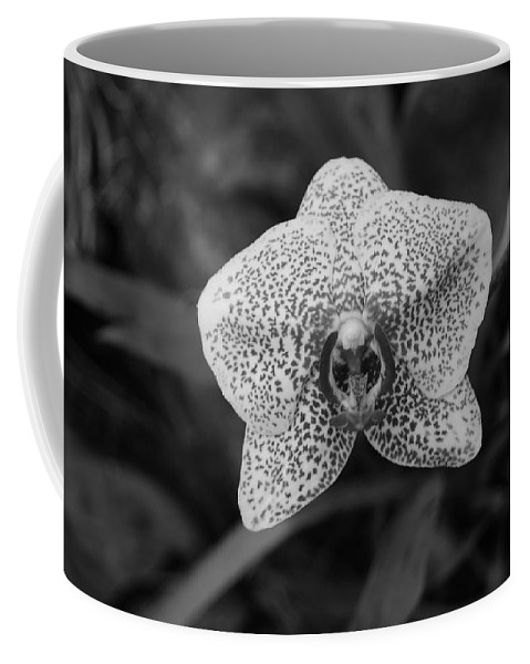 Macro Coffee Mug featuring the photograph Orchid by Rob Hans