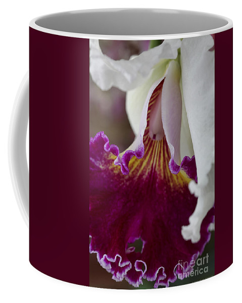 Orchid Coffee Mug featuring the photograph Orchid Ruffle by Deborah Benoit