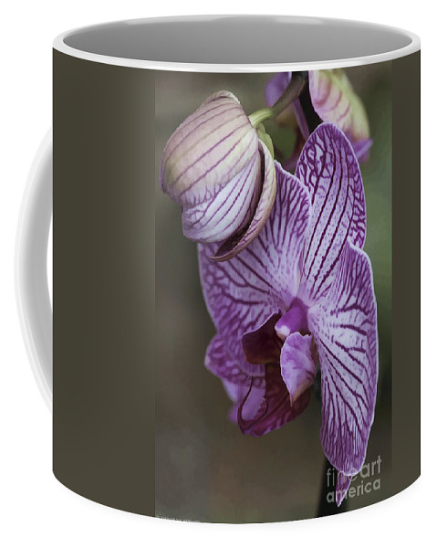 Flower Coffee Mug featuring the photograph Orchid Strips by Deborah Benoit