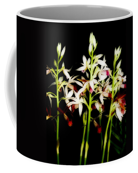 Flowers Coffee Mug featuring the photograph Orchids On Black by Ches Black