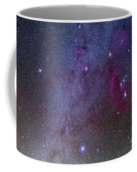 Belt Of Orion Coffee Mug featuring the photograph Orion And Canis Major Showing Dog Stars by Alan Dyer