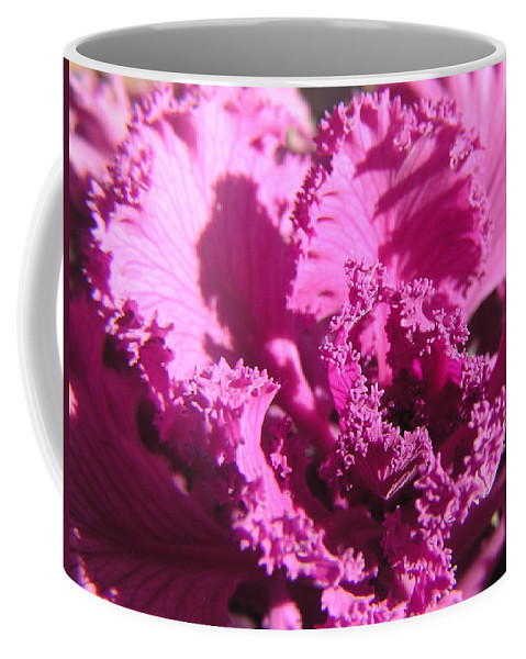 Kale Coffee Mug featuring the photograph Ornate Kale by Adam Johnson