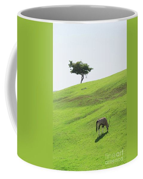 Oryx Coffee Mug featuring the photograph Oryx On Hill by Jim And Emily Bush