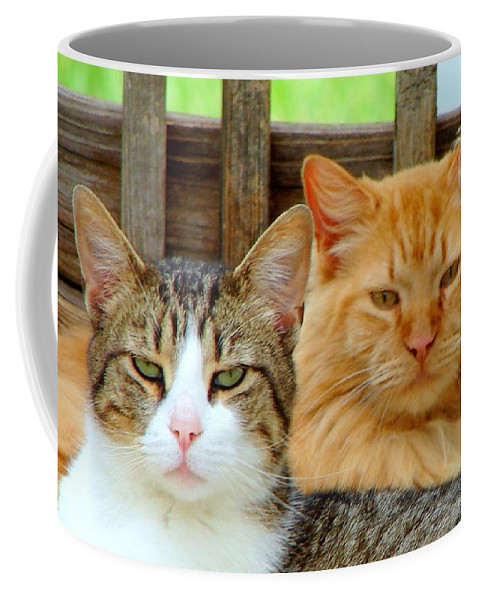 Cats Coffee Mug featuring the photograph Oscar And Red by J R Seymour