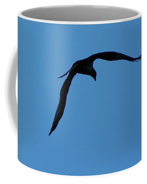 Birds Coffee Mug featuring the photograph Osprey In Flight 5 by Ben Upham III