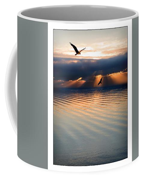 Osprey Coffee Mug featuring the photograph Ospreys by Mal Bray