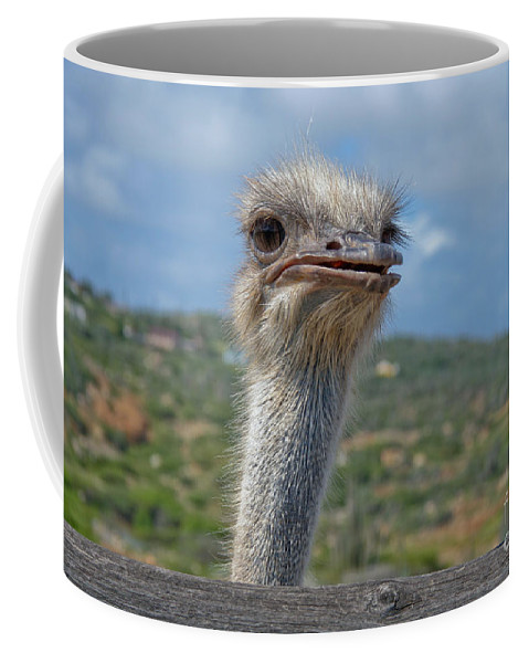 Ostrich Coffee Mug featuring the photograph Ostrich Head by Thomas Marchessault