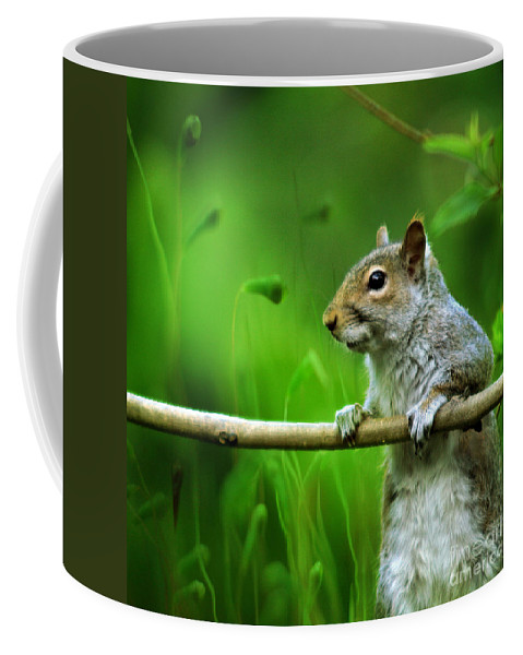 Squirrel Coffee Mug featuring the photograph Over The Fence Full Color by Angel Ciesniarska
