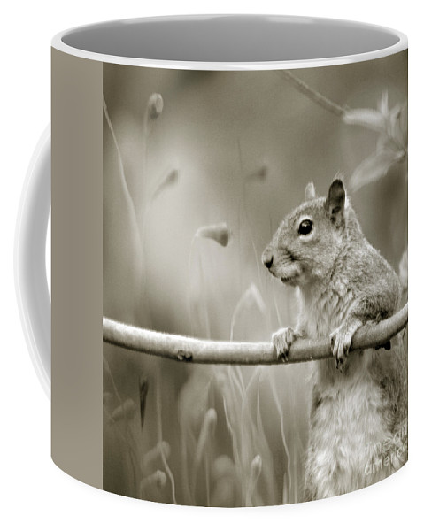 Squirrel Coffee Mug featuring the photograph Over The Fence In Black And White by Angel Ciesniarska