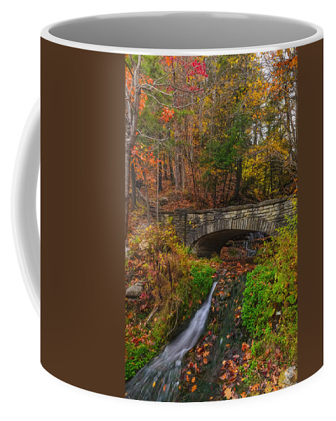 Letchworth State Park Coffee Mug featuring the photograph Over The Stream by Mark Papke