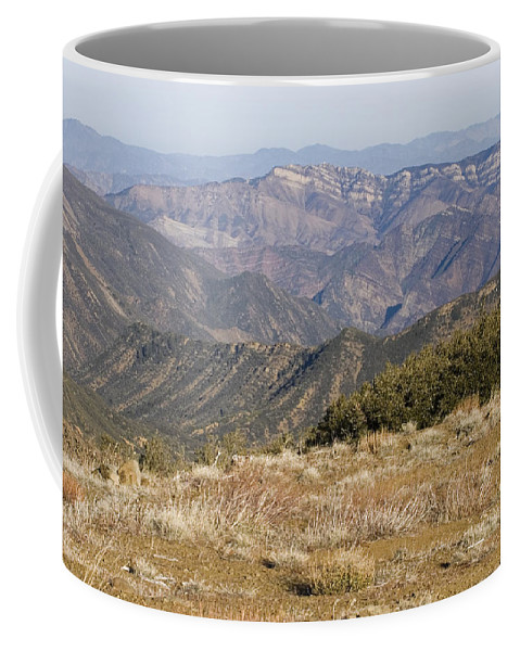 Nobody Coffee Mug featuring the photograph Overlooking Santa Paula Canyon by Rich Reid
