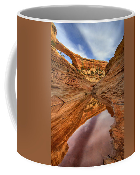 Bridge Coffee Mug featuring the photograph Owachomo Reflected by Mike Dawson