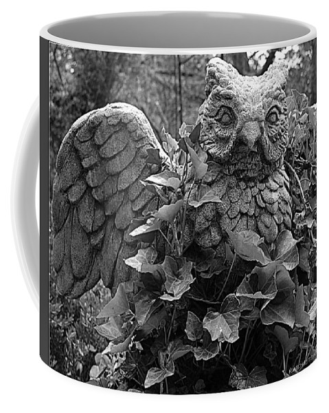 Black And White Coffee Mug featuring the photograph Owl And Ivy by Kathy Barney