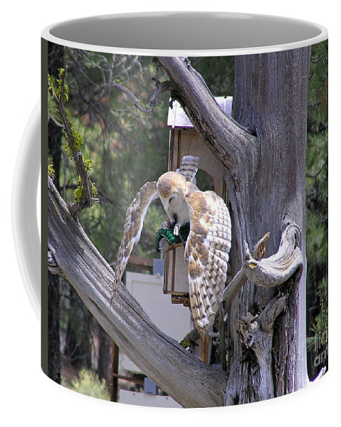 Coffee Mug featuring the photograph Owl Takeoff by Louise Magno