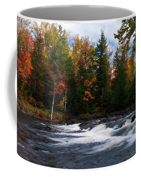 River Coffee Mug featuring the photograph Oxtongue River Ontario Autumn Scenery by Oleksiy Maksymenko