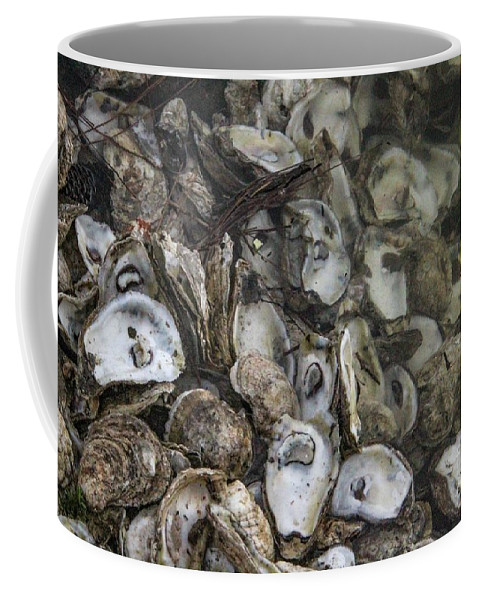 Oysters Coffee Mug featuring the photograph Oysters Four by Steven Munger