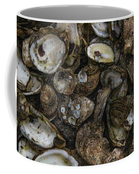 Oysters Coffee Mug featuring the photograph Oysters Two by Steven Munger